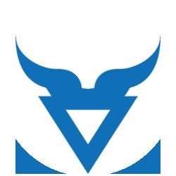 Bison Grid Logo